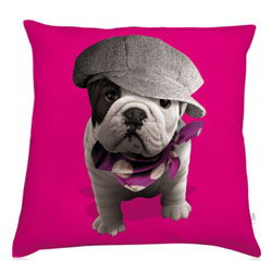 Pink French bulldog pillow by Teo Jasmin